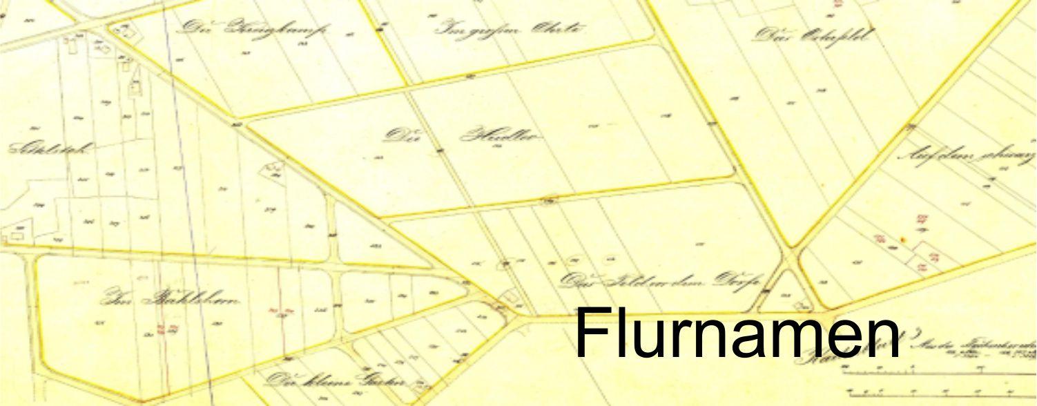 Flurnamen-Beitrag