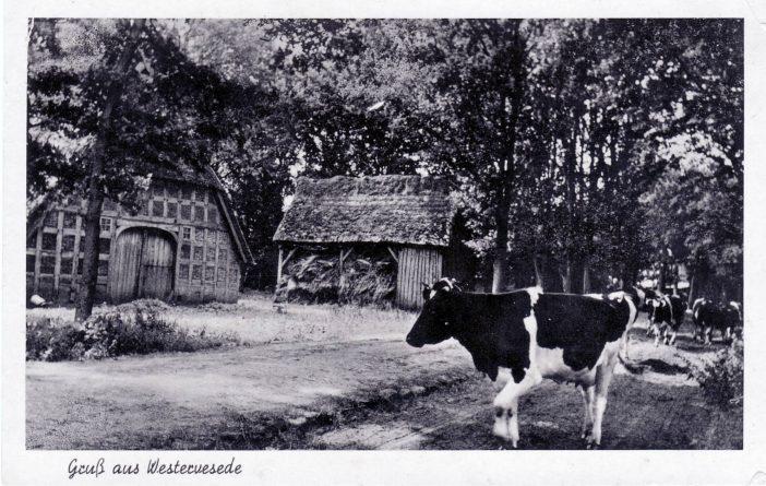 Heitmanns, Westerende
